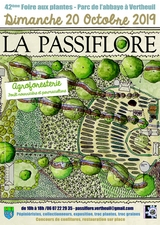 Passiflore 2019 à Vertheuil