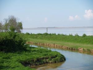 L'estuaire vu depuis Fort-Médoc