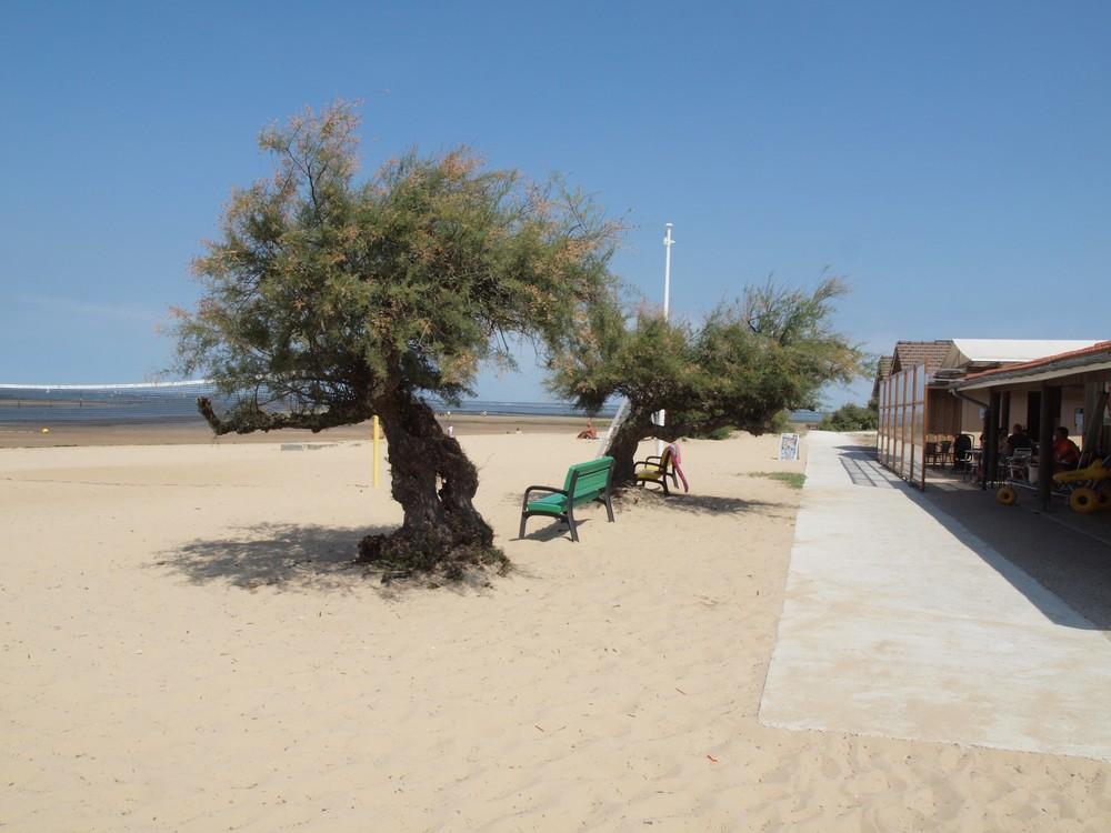 caruso33 le port de la hume et sa plage surveill e bassin d 39 arcachon gironde 33. Black Bedroom Furniture Sets. Home Design Ideas
