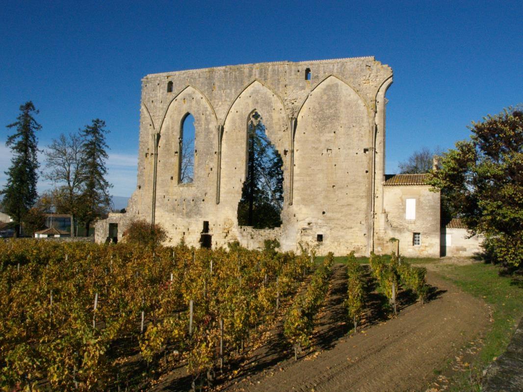 Caruso33 vinotaste cours et stages de d gustation for Saint denis de pile 33